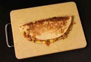 quesadilla panini 2