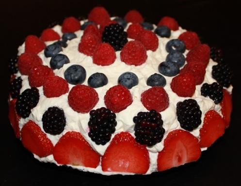 blueberry cake11