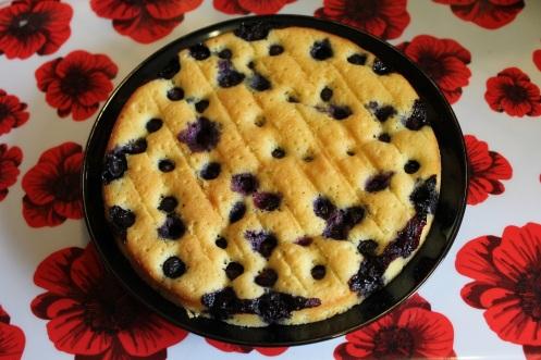blueberry cake4