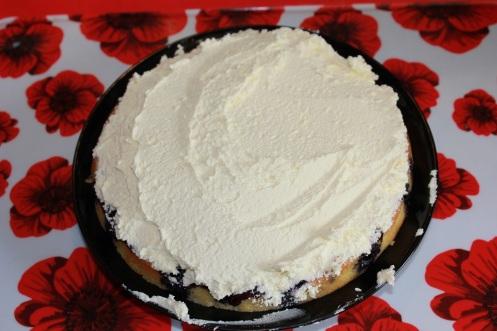 blueberry cake6