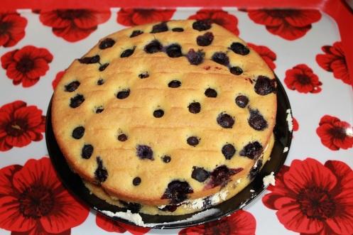 blueberry cake7