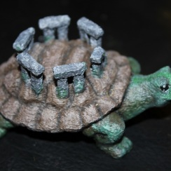 tortoise5