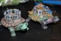 tortoise8