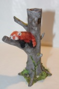 red panda 7