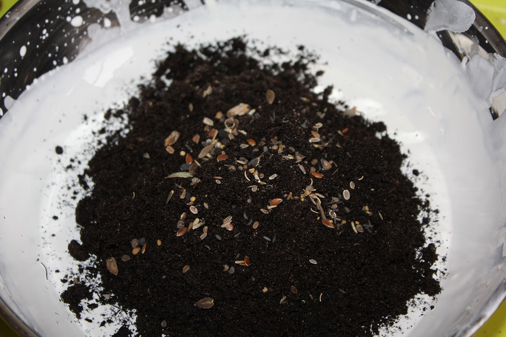 Will Seed Bombs (Balls) Made With Air Dry Clay Germinate